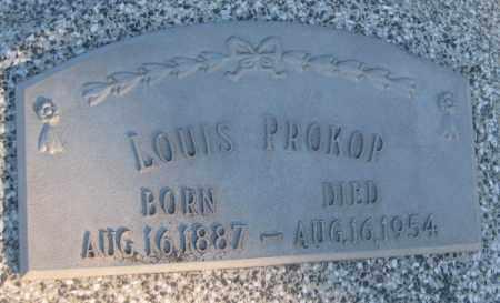 PROKOP, LOUIS - Saline County, Nebraska | LOUIS PROKOP - Nebraska Gravestone Photos