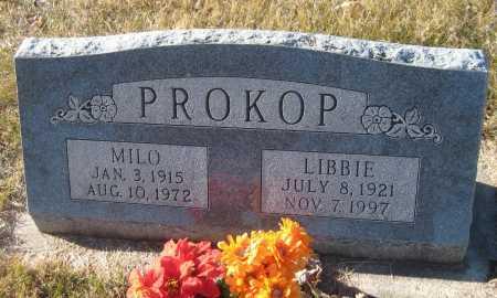 PROKOP, LIBBIE - Saline County, Nebraska | LIBBIE PROKOP - Nebraska Gravestone Photos