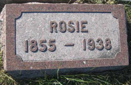 PROKOP, ROSIE - Saline County, Nebraska   ROSIE PROKOP - Nebraska Gravestone Photos