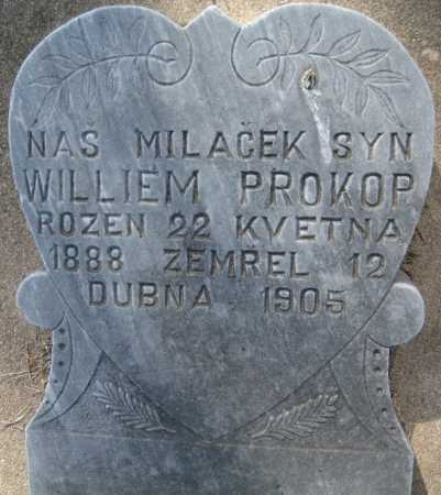 PROKOP, WILLIEM - Saline County, Nebraska | WILLIEM PROKOP - Nebraska Gravestone Photos