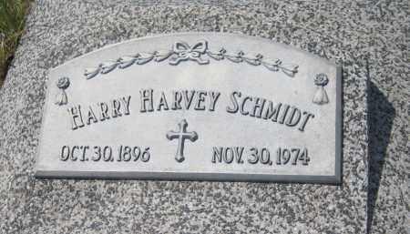 SCHMIDT, HARRY HARVEY - Saline County, Nebraska | HARRY HARVEY SCHMIDT - Nebraska Gravestone Photos