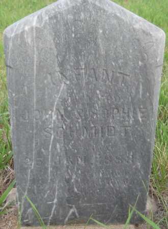 SCHMIDT, INFANT SON - Saline County, Nebraska | INFANT SON SCHMIDT - Nebraska Gravestone Photos