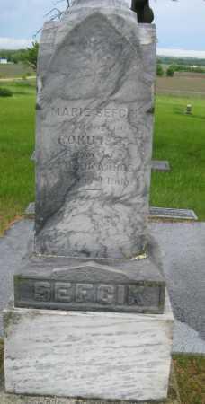 SEFCIK, MARIE - Saline County, Nebraska | MARIE SEFCIK - Nebraska Gravestone Photos
