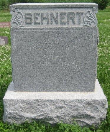 SEHNERT, ANNA SABINE - Saline County, Nebraska | ANNA SABINE SEHNERT - Nebraska Gravestone Photos