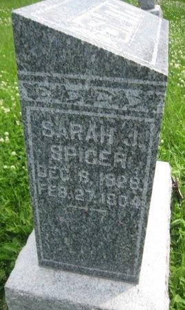 SMITH, SARAH JANE - Saline County, Nebraska | SARAH JANE SMITH - Nebraska Gravestone Photos