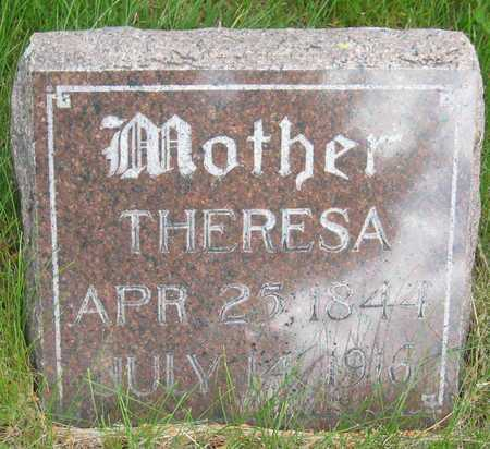 STEIDL, THERESA - Saline County, Nebraska | THERESA STEIDL - Nebraska Gravestone Photos