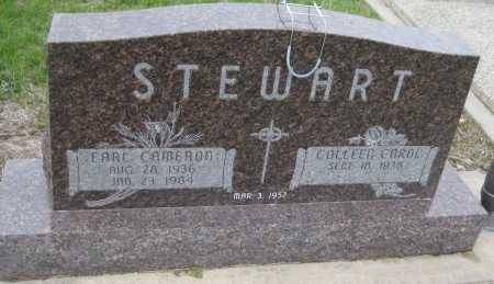 STEWART, EARL CAMERON - Saline County, Nebraska | EARL CAMERON STEWART - Nebraska Gravestone Photos