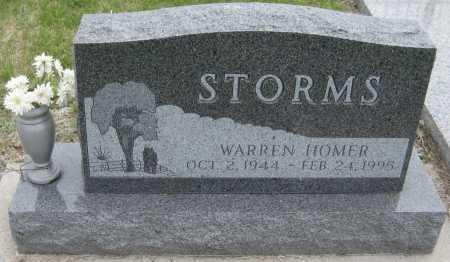 STORMS, WARREN HOMER - Saline County, Nebraska | WARREN HOMER STORMS - Nebraska Gravestone Photos