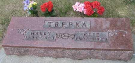 TREPKA, OLIE - Saline County, Nebraska | OLIE TREPKA - Nebraska Gravestone Photos