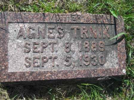 TRNIK, AGNES - Saline County, Nebraska | AGNES TRNIK - Nebraska Gravestone Photos