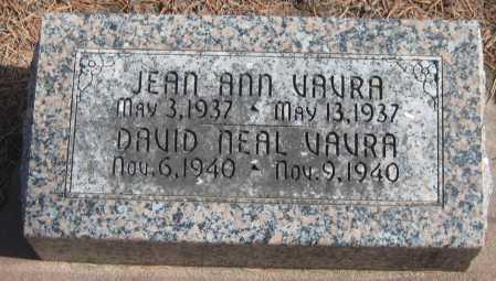 VAVRA, DAVID NEAL - Saline County, Nebraska | DAVID NEAL VAVRA - Nebraska Gravestone Photos