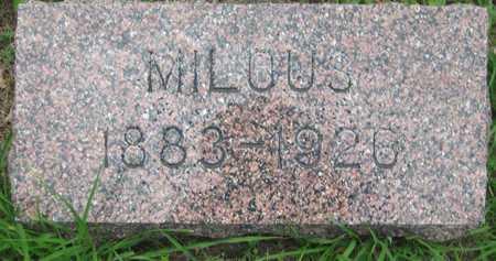 VAVRA, MILOUS - Saline County, Nebraska | MILOUS VAVRA - Nebraska Gravestone Photos