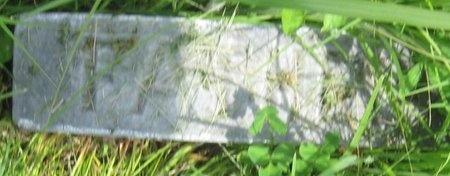 VOSSELER, WILHELM - Saline County, Nebraska | WILHELM VOSSELER - Nebraska Gravestone Photos
