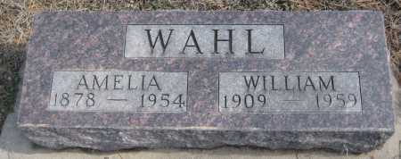 WAHL, WILLIAM - Saline County, Nebraska | WILLIAM WAHL - Nebraska Gravestone Photos