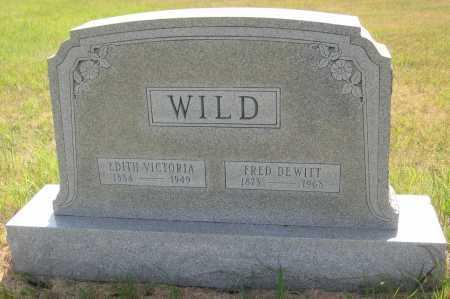 WILD, FRED DEWITT - Saline County, Nebraska | FRED DEWITT WILD - Nebraska Gravestone Photos