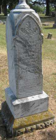 WILD, HENRY S. - Saline County, Nebraska | HENRY S. WILD - Nebraska Gravestone Photos