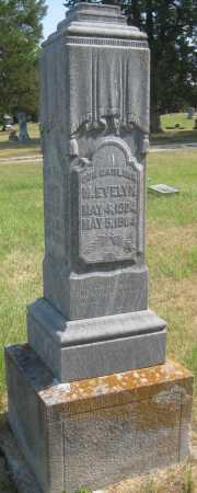 WILD, M. EVELYN - Saline County, Nebraska | M. EVELYN WILD - Nebraska Gravestone Photos