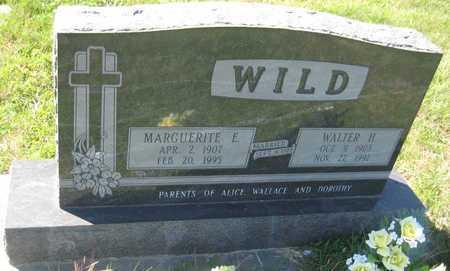 WILD, WALTER H. - Saline County, Nebraska | WALTER H. WILD - Nebraska Gravestone Photos