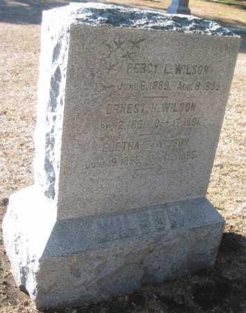 WILSON, PERCY L. - Saline County, Nebraska | PERCY L. WILSON - Nebraska Gravestone Photos