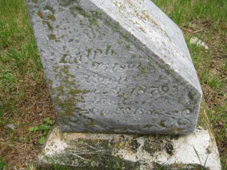 WILSON, RALPH - Saline County, Nebraska | RALPH WILSON - Nebraska Gravestone Photos