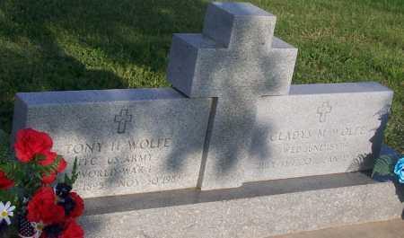 WOLFE, TONY H. - Saline County, Nebraska | TONY H. WOLFE - Nebraska Gravestone Photos