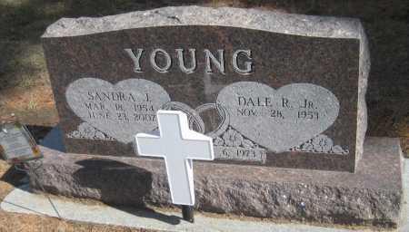 YOUNG, DALE R. JR. - Saline County, Nebraska | DALE R. JR. YOUNG - Nebraska Gravestone Photos