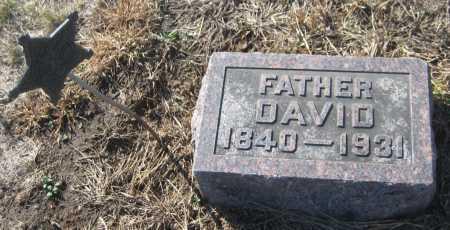 ZEIGLER, DAVID - Saline County, Nebraska | DAVID ZEIGLER - Nebraska Gravestone Photos