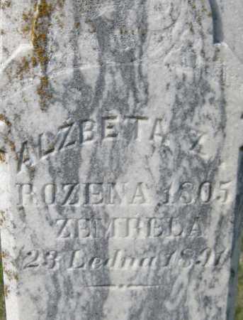 ZWINICEK, ALZBETA - Saline County, Nebraska | ALZBETA ZWINICEK - Nebraska Gravestone Photos