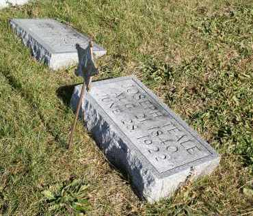 TEALE, JOSEPH - Saline County, Nebraska | JOSEPH TEALE - Nebraska Gravestone Photos