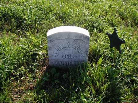 ADIR, ALEXANDER M - Sarpy County, Nebraska | ALEXANDER M ADIR - Nebraska Gravestone Photos