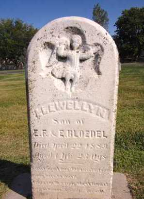 BLOEDEL, LLEWELLYN - Sarpy County, Nebraska | LLEWELLYN BLOEDEL - Nebraska Gravestone Photos