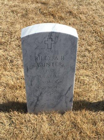 GUNTER, RILEY - Sarpy County, Nebraska   RILEY GUNTER - Nebraska Gravestone Photos