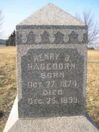 HAGEDORN, HENRY B. - Sarpy County, Nebraska | HENRY B. HAGEDORN - Nebraska Gravestone Photos