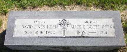 HORN, DAVID LINES - Sarpy County, Nebraska | DAVID LINES HORN - Nebraska Gravestone Photos