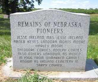 IRELAND, JESSE - Sarpy County, Nebraska | JESSE IRELAND - Nebraska Gravestone Photos