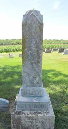 IRELAND, SUSAN E. - Sarpy County, Nebraska   SUSAN E. IRELAND - Nebraska Gravestone Photos
