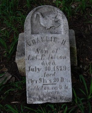 NELSON, CHARLIE H. - Sarpy County, Nebraska | CHARLIE H. NELSON - Nebraska Gravestone Photos