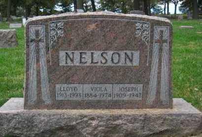 NELSON, VIOLA - Sarpy County, Nebraska | VIOLA NELSON - Nebraska Gravestone Photos