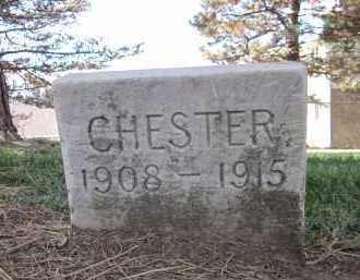 SPEARMAN, CHESTER - Sarpy County, Nebraska | CHESTER SPEARMAN - Nebraska Gravestone Photos