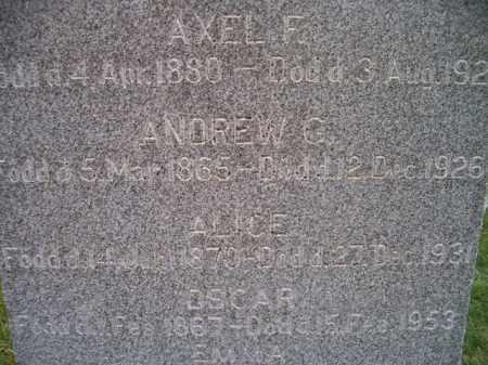 ANDERSON, ALICE - Saunders County, Nebraska   ALICE ANDERSON - Nebraska Gravestone Photos
