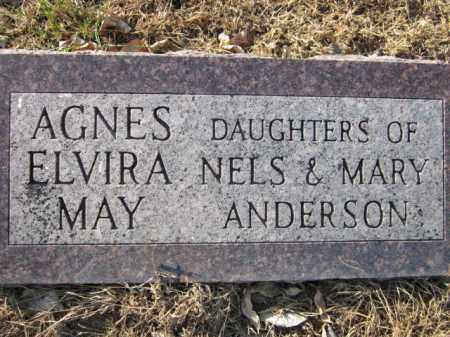 ANDERSON, AGNES - Saunders County, Nebraska   AGNES ANDERSON - Nebraska Gravestone Photos