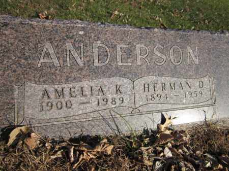 ANDERSON, HERMAN D. - Saunders County, Nebraska | HERMAN D. ANDERSON - Nebraska Gravestone Photos