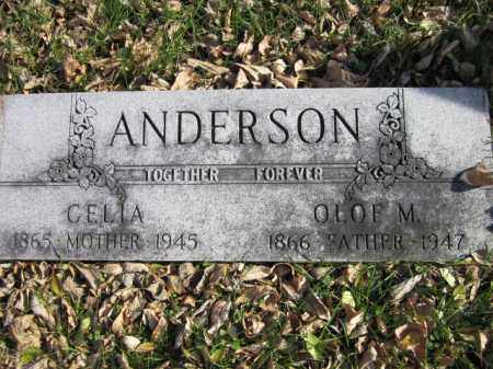 ANDERSON, CELIA - Saunders County, Nebraska | CELIA ANDERSON - Nebraska Gravestone Photos