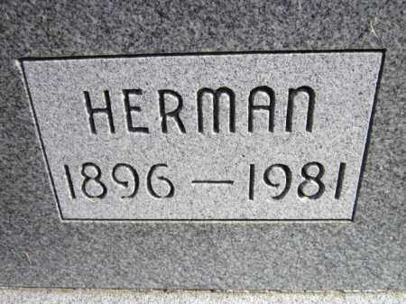 ANDERSON, HERMAN (CLOSE UP) - Saunders County, Nebraska | HERMAN (CLOSE UP) ANDERSON - Nebraska Gravestone Photos