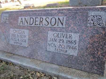 ANDERSON, OLIVER - Saunders County, Nebraska | OLIVER ANDERSON - Nebraska Gravestone Photos