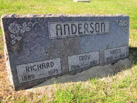 ANDERSON, TROY - Saunders County, Nebraska | TROY ANDERSON - Nebraska Gravestone Photos