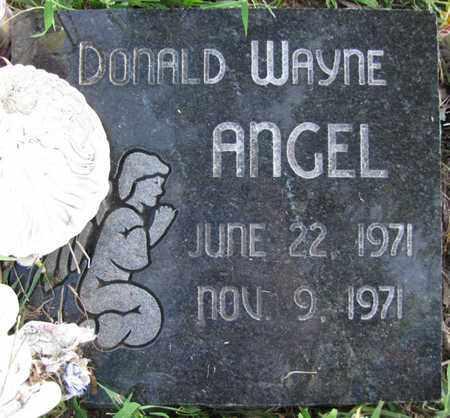 ANGEL, DONALD WAYNE - Saunders County, Nebraska | DONALD WAYNE ANGEL - Nebraska Gravestone Photos