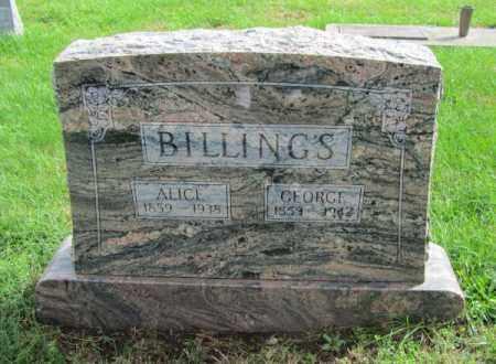BILLINGS, ALICE - Saunders County, Nebraska | ALICE BILLINGS - Nebraska Gravestone Photos