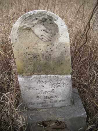 BISHOP, ERIA - Saunders County, Nebraska | ERIA BISHOP - Nebraska Gravestone Photos