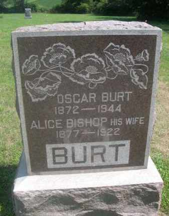 BISHOP BURT, ALICE - Saunders County, Nebraska | ALICE BISHOP BURT - Nebraska Gravestone Photos